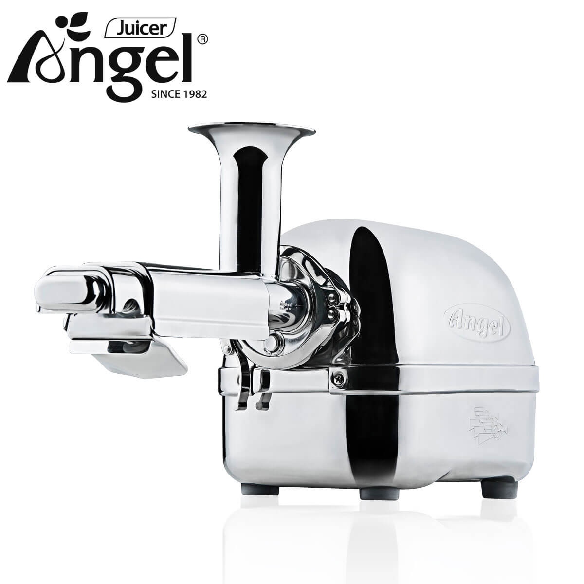 Angel Ag 5500 Stainless Steel Twin Gear Cold Press Slow